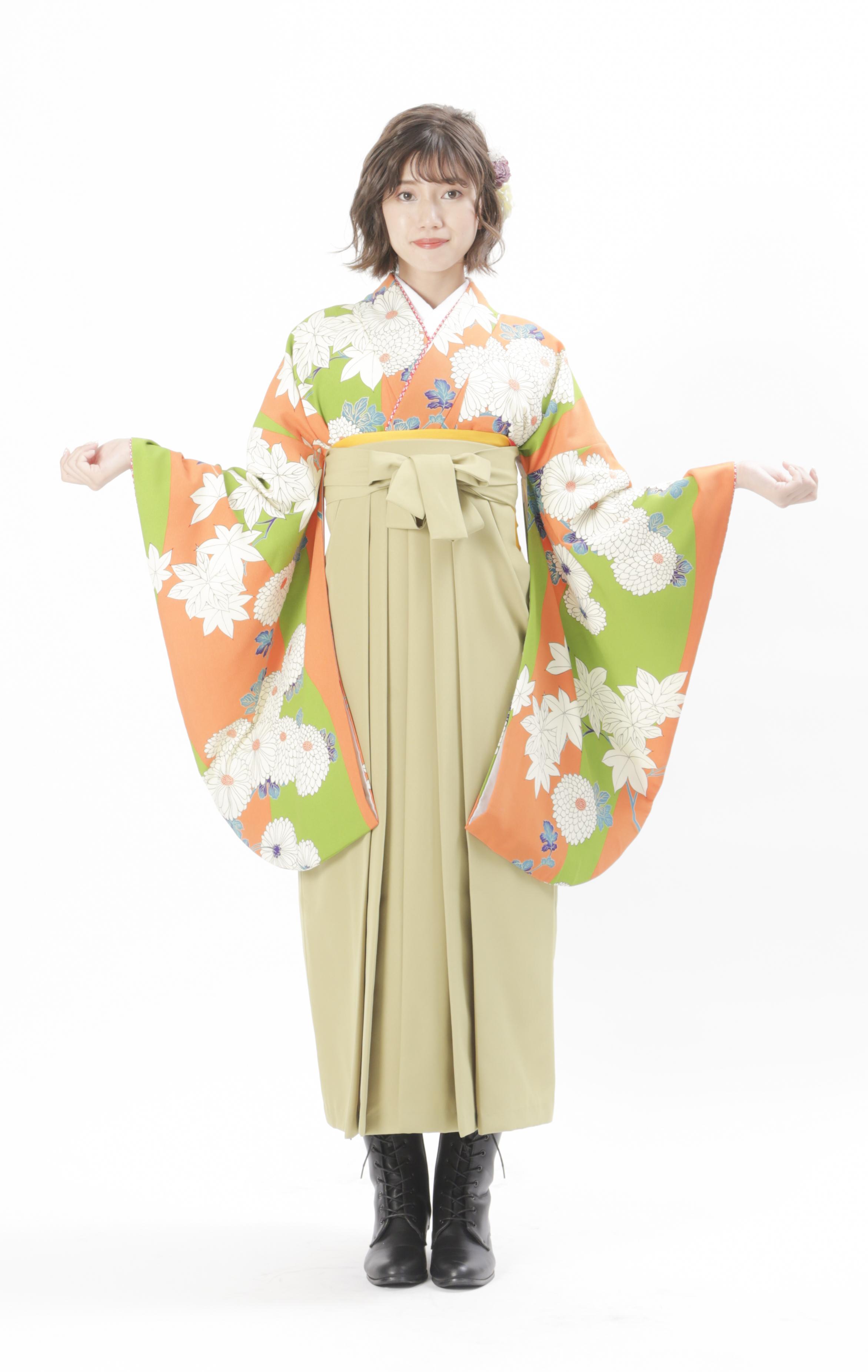 オレンジ菊
